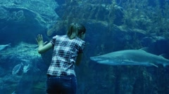 The woman and the shark Stock Footage