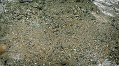 River Bed Ripling In Shallow Water Stock Footage