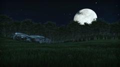 Oil Palm Tree Plantation against full moon, tilt Stock Footage