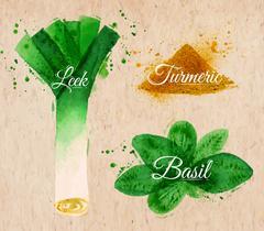 Spices herbs watercolor leeks, basil, kraft - stock illustration