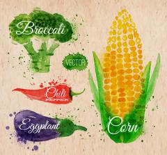 Vegetables watercolor corn, broccoli, chili, kraft - stock illustration