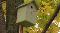 birdhouse in a tree in autumn - stock footage