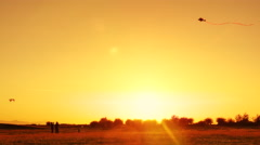 4K Man and Boy Flying Kite Together at Golden Hour at Park, Sunset Silhouette Stock Footage