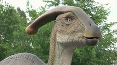 Parasaurolophus life-size model Stock Footage