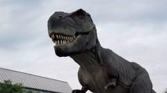 Tyrannosaurus rex life-size model Stock Footage