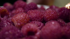 Vibrant, ripe, organic, fresh raspberries backlit by the morning sun Stock Footage