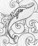 Vector zentangle whale in sea, print for adult coloring page A4 - stock illustration