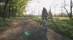 Girl running with retriever dog on path in sunny park, slow motion - stock footage