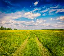 Spring summer - rural road in green field scenery lanscape Stock Photos
