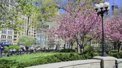 Spring view of Union Square Park, New York City Stock Footage
