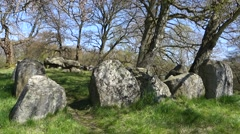 King's Dolmen, Kongedyssen, from the Neolithic period in Denmark from 3,400 B.C. Stock Footage