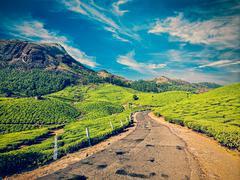 Road in tea plantations, India Stock Photos