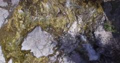 Waterfalls EugeniaFalls ConservationArea GreyCounty Drone Aerial 4K Stock Footage