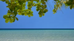 Camera tilt up of the tropical seascape in UHD Stock Footage