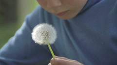 Portrait of a boy with a flower dandelion. - stock footage