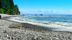 4K Sombrio Beach near Tofino BC, Vancouver Island Canada Stock Footage