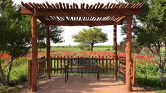 Bench in Texas Flower Garden Arkistovideo