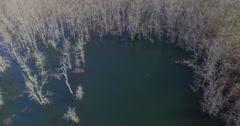 TreesInWater Revenant Wide Drone Aerial 4K Stock Footage