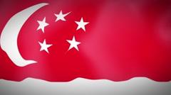 Waving Flag of SINGAPORE Stock Footage