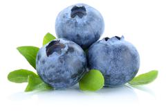 Blueberry blueberries berry berries fruit fruits isolated on white Stock Photos