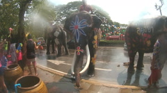 Thai elephants playing with people on street during Songkran - stock footage