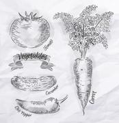 Vegetables carrot, tomato, chili peppers vintage Stock Illustration
