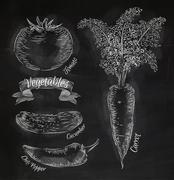 Vegetables carrot, tomato, chili, cucumber chalk Stock Illustration