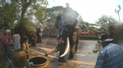 Thai elephants playing with people on street during Songkran Arkistovideo
