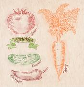 Vegetables carrot, tomato, chili, cucumber country Stock Illustration