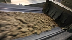 Submission of clay for the production department Stock Footage