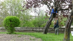 Twins playing in garden. Tree climbing. Stock Footage