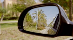 Road lined with tropical palm trees Stock Footage