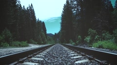 Railroad Tracks Deep In The Woods Stock Footage