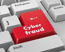 Cyber fraud Stock Illustration