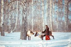 Young girl walks with a reindeer in the winter Stock Photos