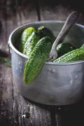 Preparation of low-salt pickled cucumbers - stock photo