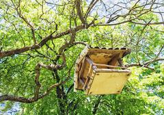Wooden bird house hanging on the green tree Stock Photos