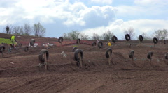 Motocross high leap Stock Footage