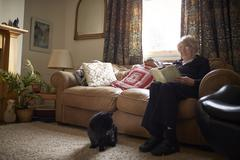 Senior Woman With Pet Cat Sitting On Sofa Reading Book - stock photo