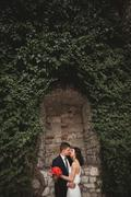 Gorgeous newlywed posing near beautiful wall of plants bushes trees in their - stock photo