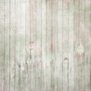Vintage Light Green Wood Background - stock photo