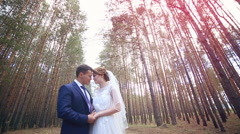 Young couple in love Gently touch, kiss each other under the huge trees Stock Footage