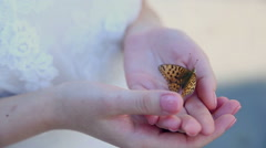 Woman Hands Holding Butterfly Outdoors Stock Footage