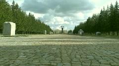 War Memorial World War II in the park - stock footage
