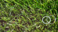 Wedding rings in grass - stock footage