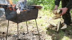 Firewood burning in the mangal. Stock Footage