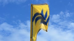 """Flag of the regiment """"Azov"""". Stock Footage"""