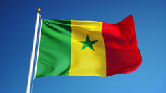 Senegal flag in slow motion seamlessly looped with alpha - stock footage