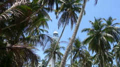 Dondra Head Lighthouse behind the palmtrees Stock Footage