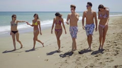 Group of multiracial young friends on a beach - stock footage
